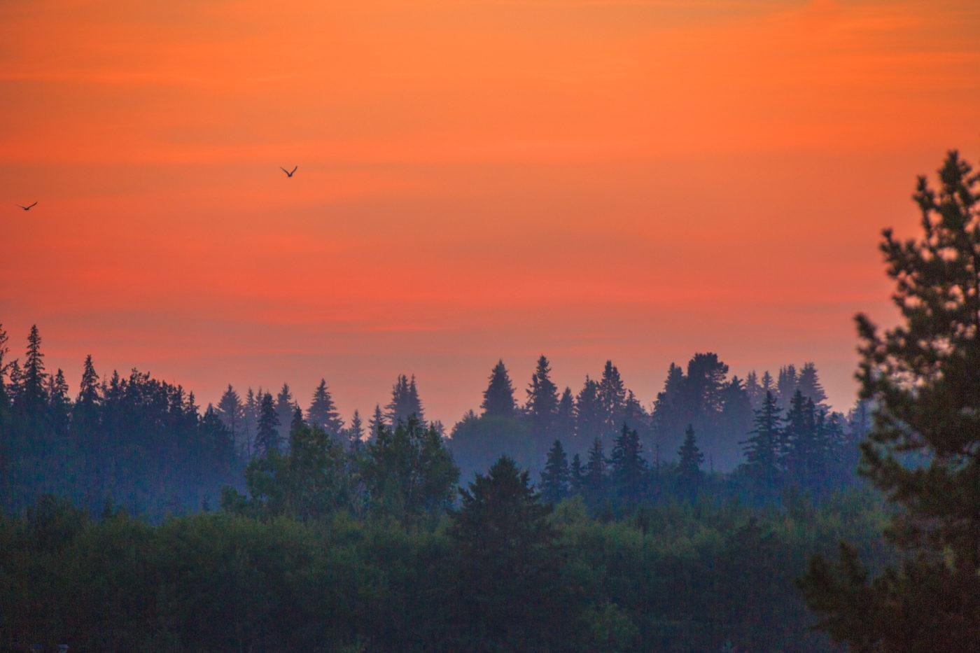 A beautful golden sunset over Edmonton.